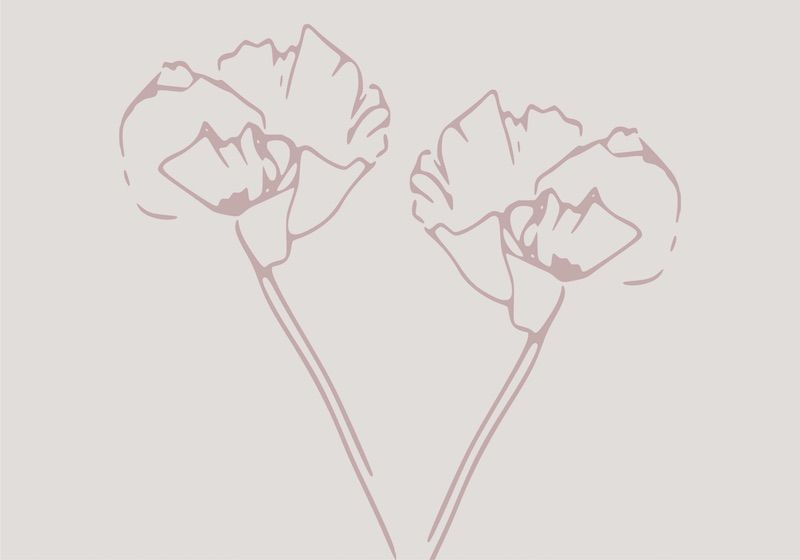 wallpaper of two simplified flowers